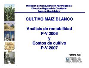 CULTIVO MAIZ BLANCO P-V V y Costos de cultivo