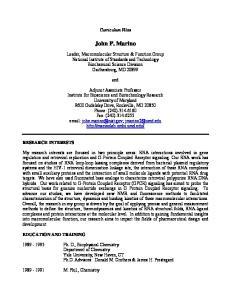 Curriculum Vitae. John P. Marino