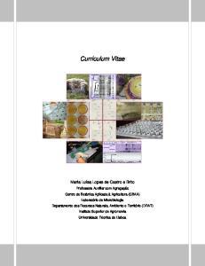 Curriculum Vitae. Maria Luisa Lopes de Castro e Brito