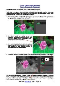 Curso Photoshop Elements 8 Ficha 6. Ejercicios de Photoshop 1