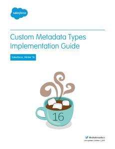Custom Metadata Types Implementation Guide