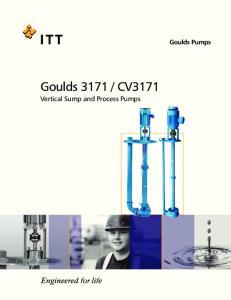 CV3171 Vertical Sump and Process Pumps. Goulds Pumps