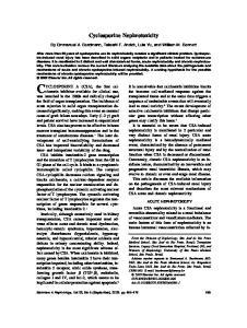 Cyclosporine Nephrotoxicity