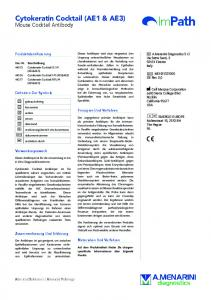 Cytokeratin Cocktail (AE1 & AE3)