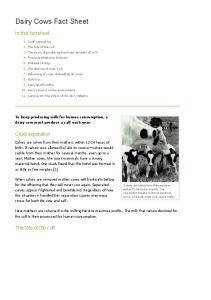 Dairy Cows Fact Sheet