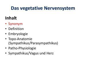 Das vegetative Nervensystem Inhalt