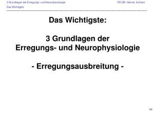 Das Wichtigste: 3 Grundlagen der Erregungs- und Neurophysiologie. - Erregungsausbreitung -