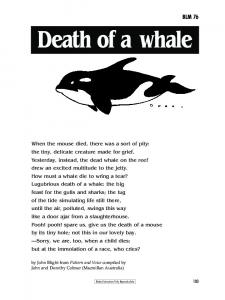 Death of a whale BLM 76
