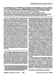 DECEMBER 22, 2006 VOLUME 281 NUMBER 51 JOURNAL OF BIOLOGICAL CHEMISTRY 39407