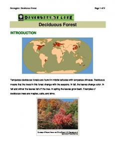 Deciduous Forest. Temperate deciduous forests are found in middle latitudes with temperate climates. Deciduous