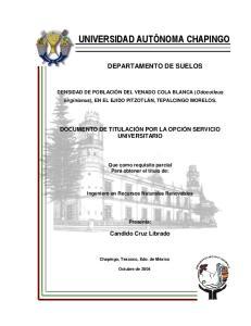 DEPARTAMENTO DE SUELOS