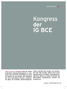 der IG BCE Gewerkschaft 2013