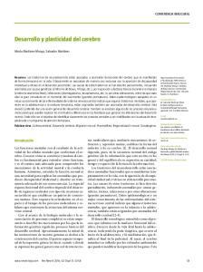 Desarrollo y plasticidad del cerebro