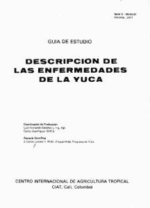 DESCRIPCION DE LAS ENFERMEDADES DE LA YUCA