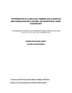 DETERMINANTES DE LA SALUD DE LA PERSONA ADULTA JOVEN DEL ASENTAMIENTO HUMANO LA VICTORIA DEL DISTRITO DE EL TAMBO HUANCAYO 2013
