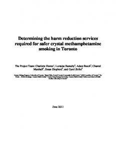 Determining the harm reduction services required for safer crystal methamphetamine smoking in Toronto