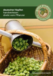 deutscher Hopfen handverlesen direkt vom Pflanzer