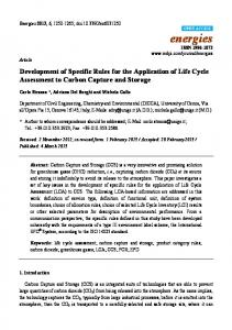 Development of Specific Rules for the Application of Life Cycle Assessment to Carbon Capture and Storage