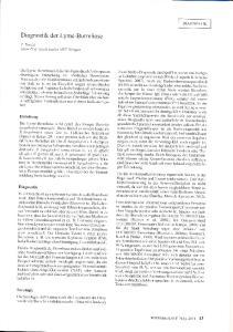 Diagnostik der Lyme-Borreliose