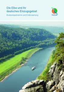 Die Elbe und ihr deutsches Einzugsgebiet. Bestandsaufnahme und Erstbewertung