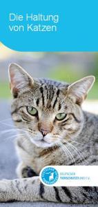 Die Haltung von Katzen. Die Subline beträgt 18 pt