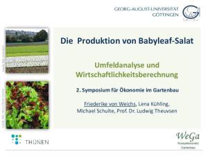 Die Produktion von Babyleaf-Salat