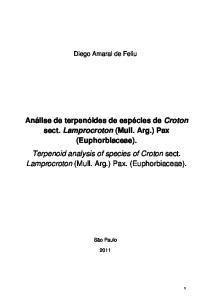 Diego Amaral de Feliu