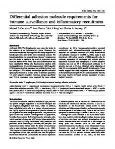 Differential adhesion molecule requirements for immune surveillance and inflammatory recruitment