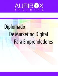Diplomado De Marketing Digital Para Emprendedores