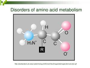 Disorders of amino acid metabolism