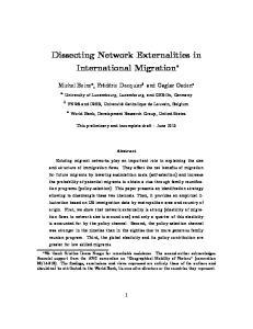 Dissecting Network Externalities in International Migration
