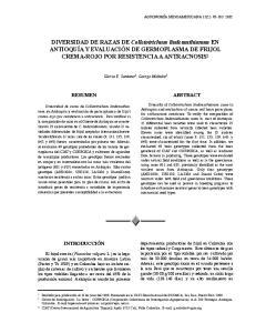 DIVERSIDAD DE RAZAS DE Colletotrichum lindemuthianum EN ANTIOQUÍA Y EVALUACIÓN DE GERMOPLASMA DE FRIJOL CREMA-ROJO POR RESISTENCIA A ANTRACNOSIS 1