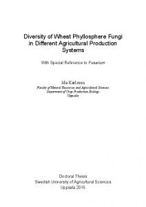 Diversity of Wheat Phyllosphere Fungi in Different Agricultural Production Systems