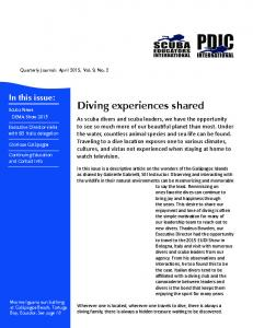 Diving experiences shared