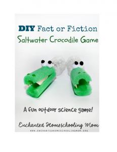 DIY Fact or Fiction Saltwater Crocodile Game