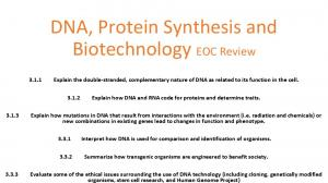 DNA, Protein Synthesis and Biotechnology EOC Review