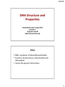 DNA Structure and Properties