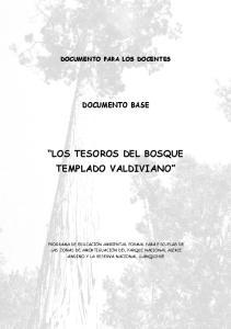 DOCUMENTO PARA LOS DOCENTES DOCUMENTO BASE