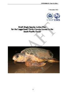 Draft Single Species Action Plan for the Loggerhead Turtle (Caretta caretta) in the South Pacific Ocean