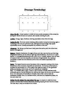 Dressage Terminology