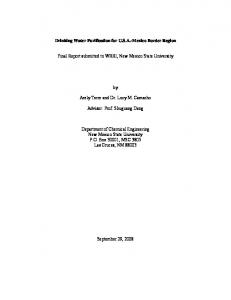 Drinking Water Purification for U.S.A.-Mexico Border Region. Final Report submitted to WRRI, New Mexico State University