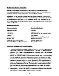 Dry Baby Dry: Teacher Information