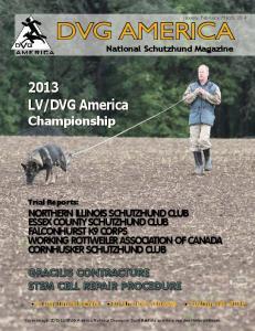 DVG America Championship