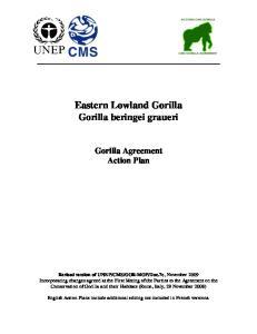 Eastern Lowland Gorilla Gorilla beringei graueri