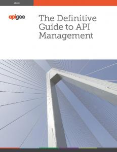 ebook The Definitive Guide to API Management