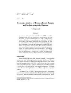 Economic Analysis of Tissue-cultured Banana and Sucker-propagated Banana