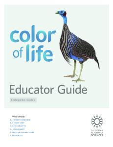 Educator Guide. Kindergarten Grade 2