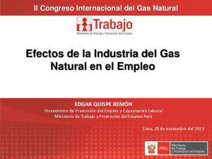 Efectos de la Industria del Gas Natural en el Empleo