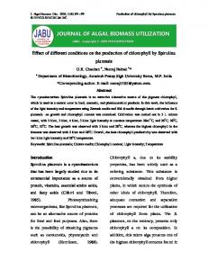 Effect of different conditions on the production of chlorophyll by Spirulina platensis