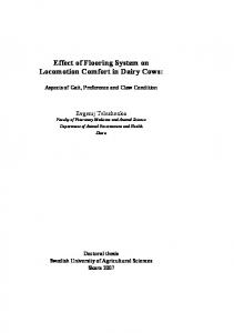 Effect of Flooring System on Locomotion Comfort in Dairy Cows: